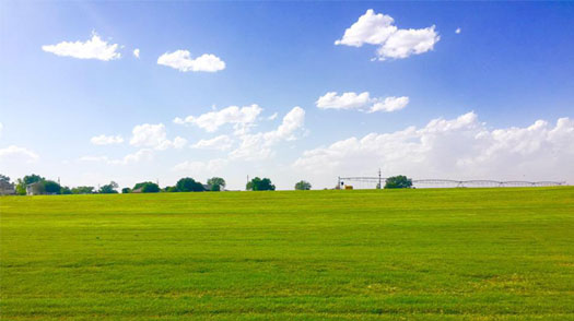 Lubbock Turf Company's vast sod farm in Lubbock.