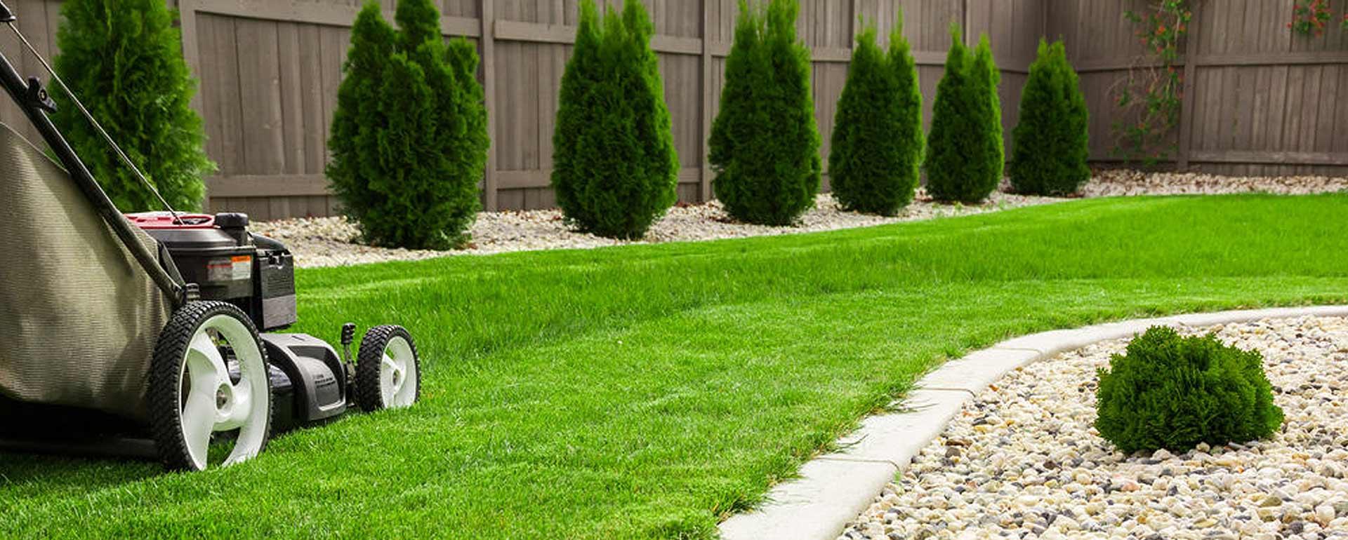 A green lawn in a backyard.